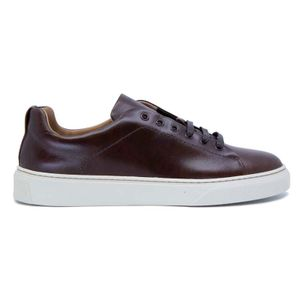 Avatar sneakers in brown leather
